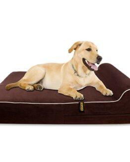 cama extra grande para perros