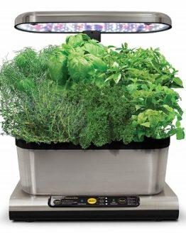 kit caspsulas semillas de hierbas comprar baratas online